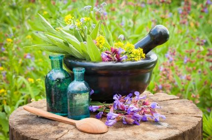 Homeopathic Remedies – What Are the Benefits?